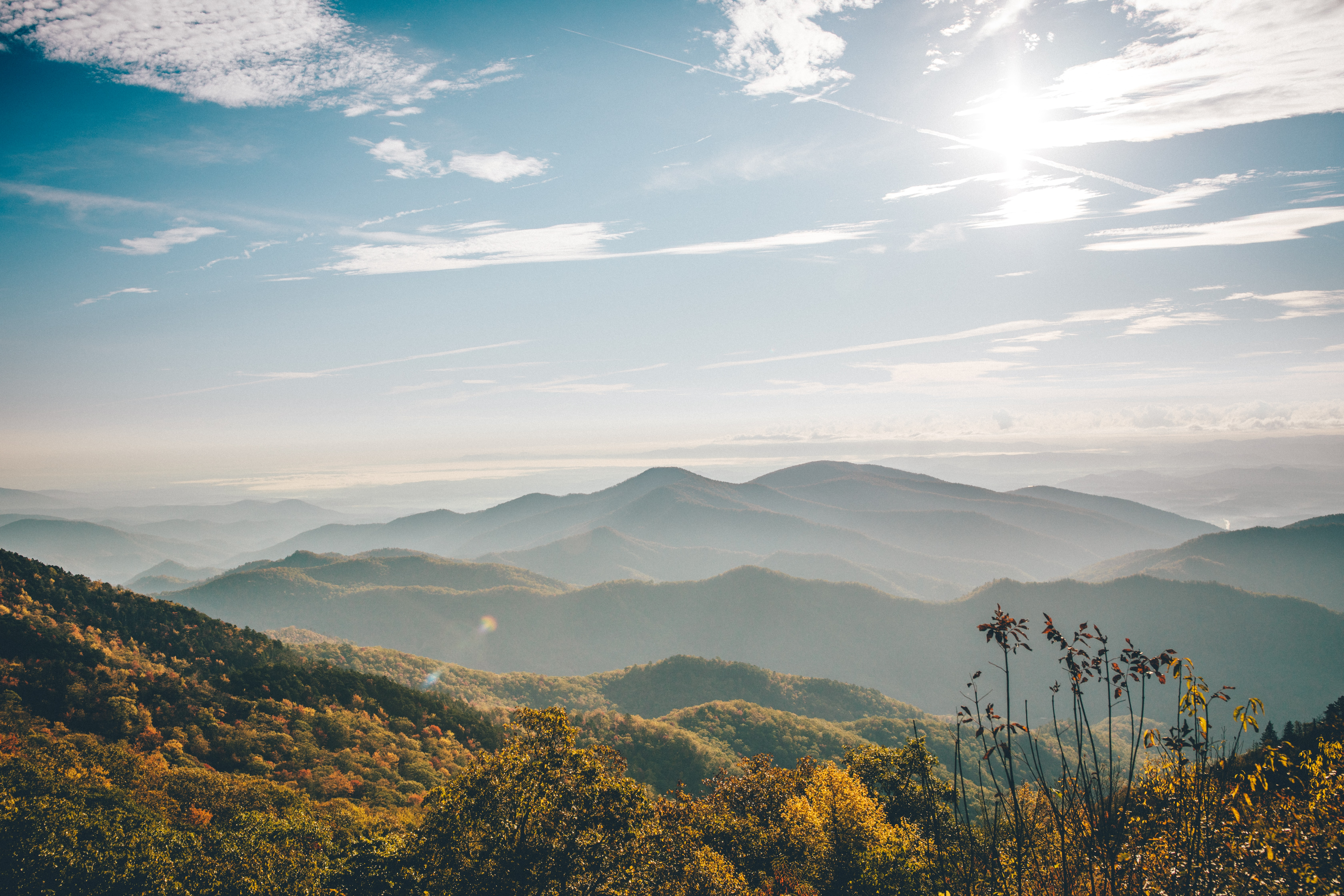 Photo by Wes Hicks on Unsplash